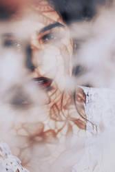 Cotton sun by iNeedChemicalX