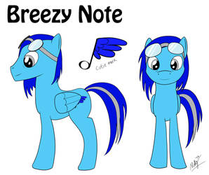 Breezy Note OC ref sheet by MallyAzure