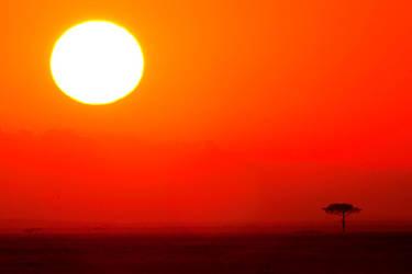 My Africa 3 by catman-suha