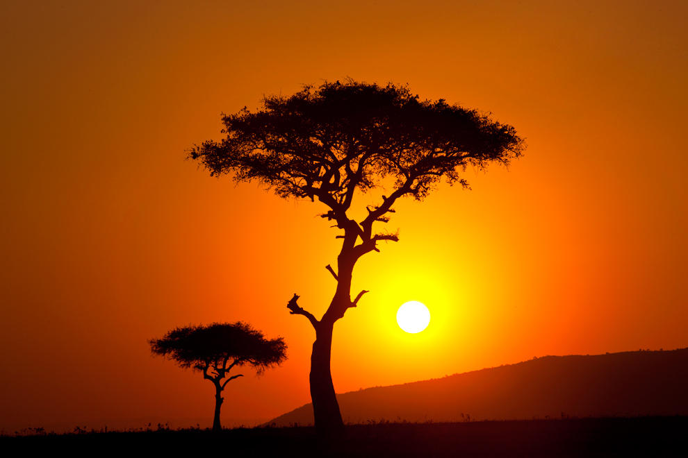My Africa 45 by catman-suha