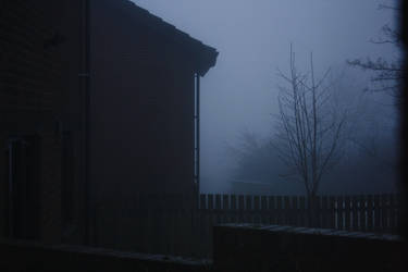 Foggy Day [1] by TekkitzMania