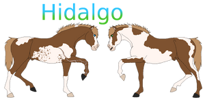 Hidalgo|Horse Race|Reference 2017 by IloveWerewolf1