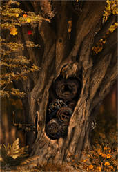 How seasons change... by Snailmeow