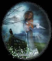The Nightbird by Misty2007