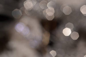 bokeh4 by TaniaGarvin