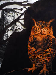 owl in the woods by AmberLilyC-D
