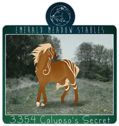3354 Calypso's Secret by just-sora