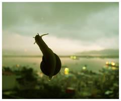 Snail by scavengerpan