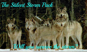 The Silent Storm Pack by Penguins-Fan