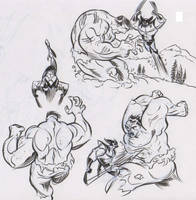 Wolverine Vs. Hulk by dfridolfs