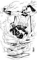 Batman Catwoman cover by dfridolfs
