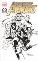 New Avengers HERO Cover by dfridolfs