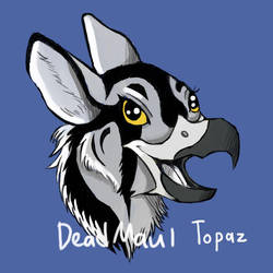 Topaz the Falcon Gryphon by DeadMaul