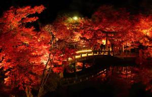 Bridge at Eikando Temple by mkuegler