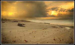 beach2 by xedgerx