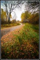 Fall3 by xedgerx