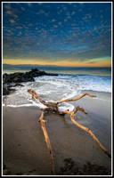 Drifting Dawn by xedgerx