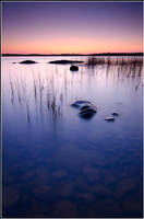 Blue Evening by xedgerx