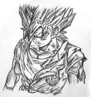 Goku is angry! by gokujr96