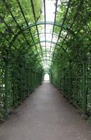 Summer Garden by ManicHysteriaStock
