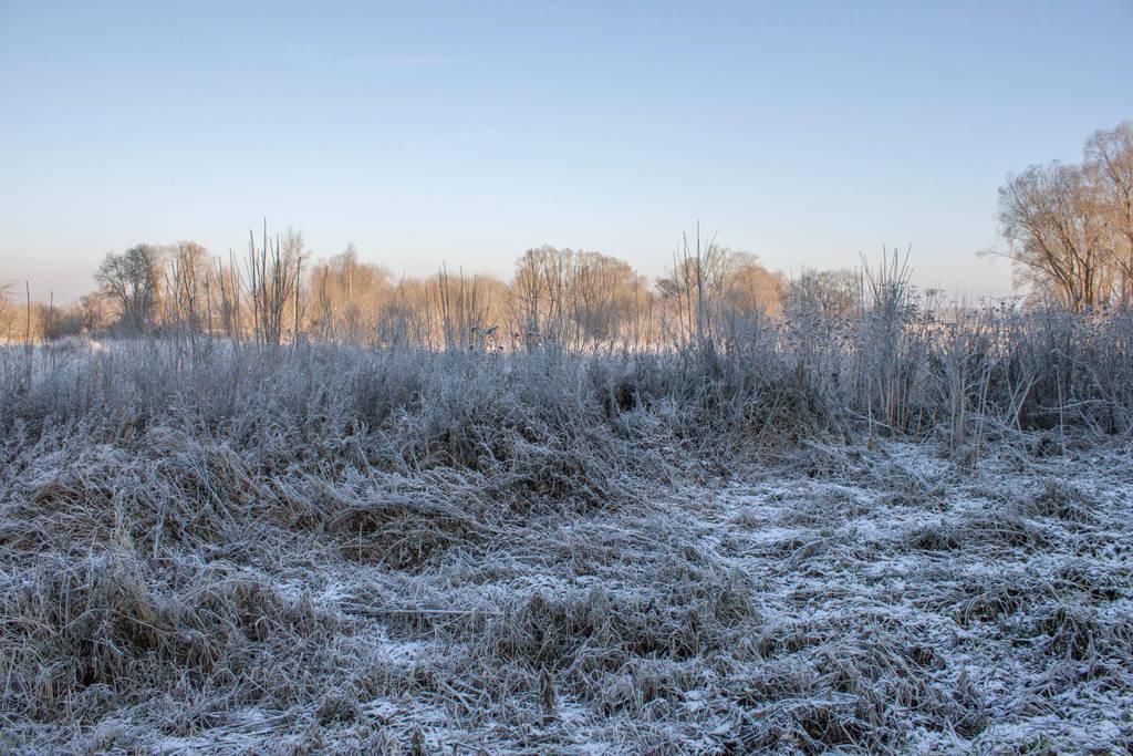 Winterscape by ManicHysteriaStock
