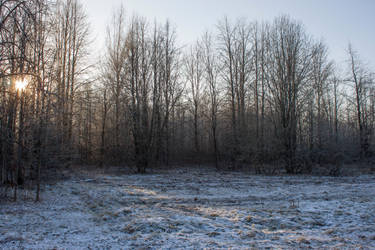 Winterscape 7 by ManicHysteriaStock