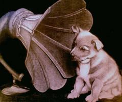 JAZZ DOG by sinsenor