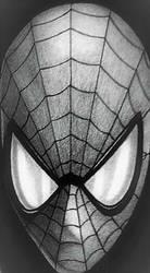 Spider by sinsenor