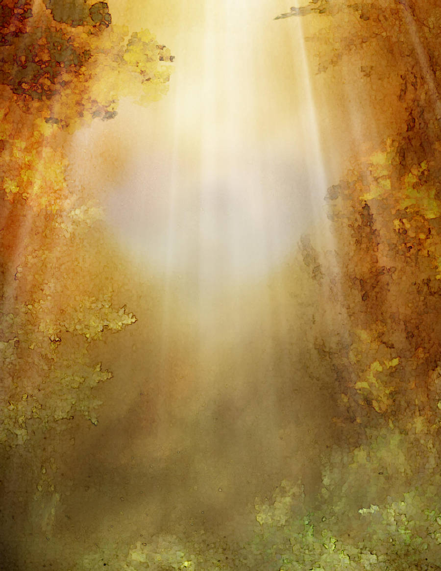 329 Autumn Light 2 by Tigers-stock