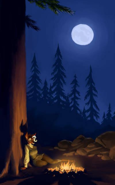 Campfire Final by Sankam