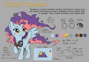 Twilight Tempest Model Sheet by Sankam