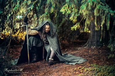 The Blood of Gondor by RaphaelleM