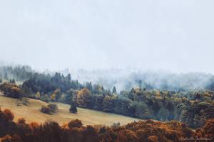 Whisper of Morn by RaphaelleM