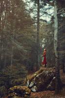 Stillness by RaphaelleM