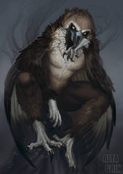 Commission: Brooding Vulture by AltaGrin