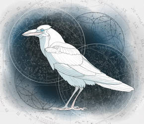 Wyrda! - Drawlloween - Day 11 Raven by Kellykatz