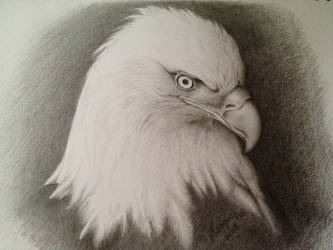 Traditional Art (Pencil) by KoolBluSky