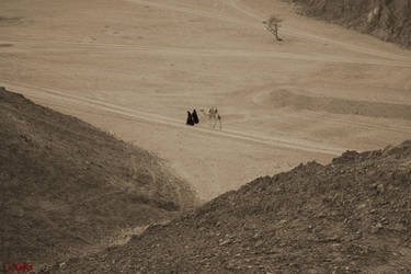alone in the desert by LexartPhotos
