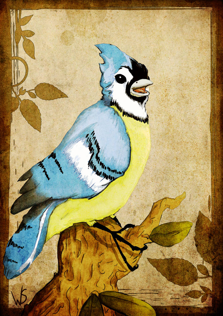 Blue Jay by wendystolyarov