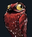 Potoo ID by sickdelusion