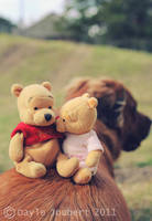 Winnie and his lady 3 by luvsinspiration