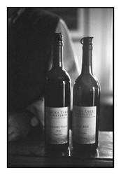 2018-094 Wine tasting at Keuka Lake Vineyards by pearwood