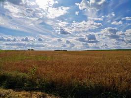 summer sky by Mittelfranke