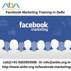Facebook Marketing Training in Delhi by ajayaidm001