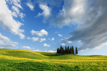 My lovely Tuscany by nongOui