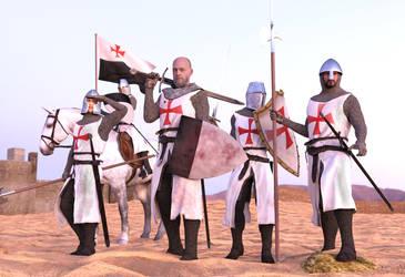 Templar squad by dazinbane