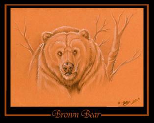 Brown Bear by tarkheki