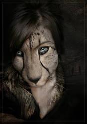 Cheetah by kalabalik