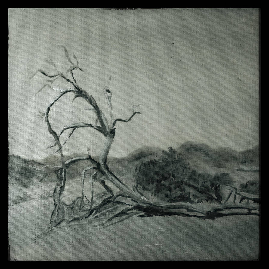 Landscape study (1) by raboeart