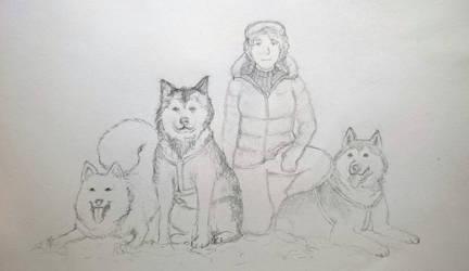 Dog Sled Saga: Team Fesquishety by fesquishety